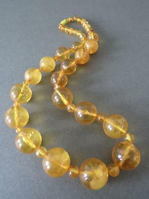 £550 • Buy Vintage Natural Baltic Butterscotch Egg Yolk Honey Amber Round Bead Necklace