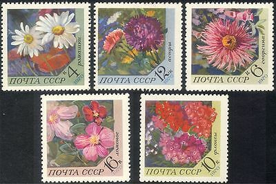 Russia 1977 Flowers/Plants/Nature/Aster/Camomile/Clematis/Phlox 5v Set (n43973) • 2.95£