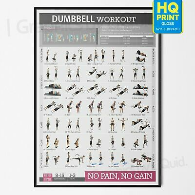 Dumbbell Workout Fitness Training Chart Exercise Poster PRINT *LAMINATED* A4 A3 • 12.99£