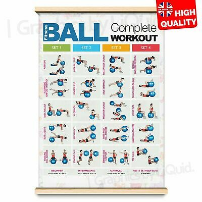 BALL WORKOUT Step Fitness Training Chart Exercise Poster PRINT *LAMINATED* A4 A3 • 2.99£