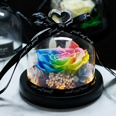 AU46.12 • Buy Preserved Rose In Flask LED Dome Glass Valentines Mothers Day Birthday Day Gift
