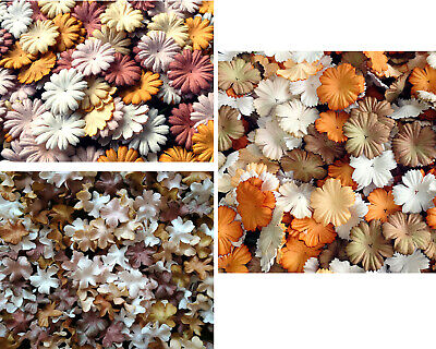 Beautiful Mulberry Paper Flowers Blooms Crafts Assorted ฺTone Brown White Colour • 5£