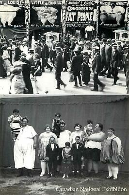$ CDN3.90 • Buy Congress Of Fat People At CNE Circus Sideshow In C.1913 Modern Postcard