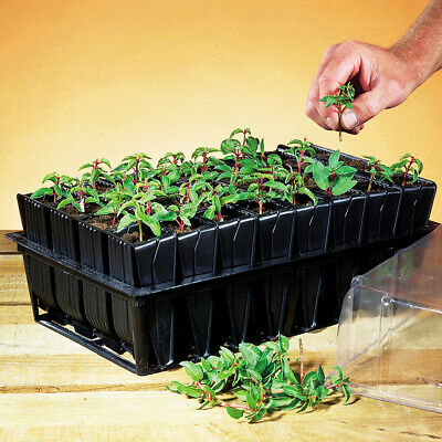 Deep Root Trainers 100% Recycled Plastic Reusable Durable 1 X Root Trainer T&M • 15.99£
