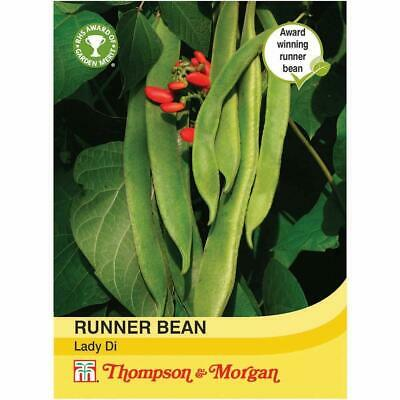 Runner Bean Seeds Vegetable Garden Plants Annual 'Lady Di' 1 Packet 40 Seeds T&M • 3.69£