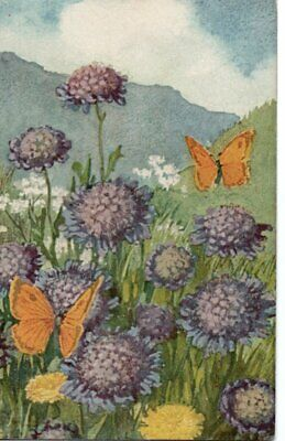 PRETTY SWISS ART Postcard:   BUTTERFLIES & SCABIOUS FLOWERS • 0.99£