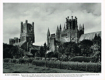 £3.29 • Buy Ely Cathedral Cambridgeshire Vintage Picture Old Print 1958 CLPBOEA#35