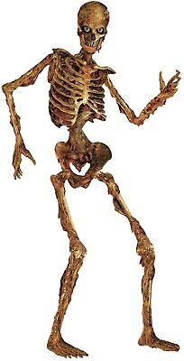 $21.18 • Buy 6 Ft Life Size Jointed Skeleton Halloween Party Haunted House Decoration Props