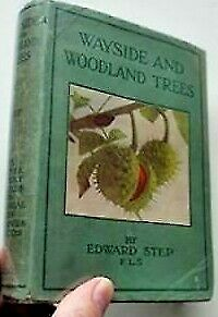 Wayside And Woodland Trees Edward Step • 10£