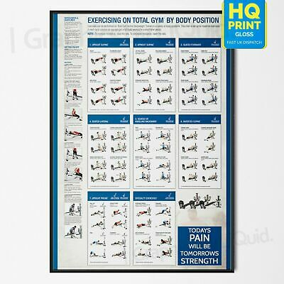 £7.99 • Buy GYM WORKOUT Profession Fitness Training Chart Exercise Poster *LAMINATED* A4 A3