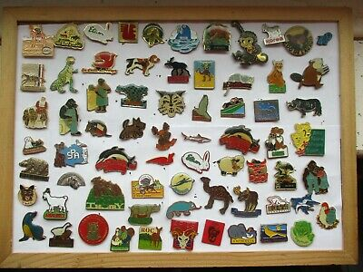 ANIMALS ZOO FARM JUNGLE SHARK RHINO BEAR CAMEL 69 PIN BADGE JOB LOT BUNDLE 99p • 5.50£