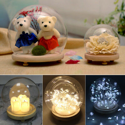 £11.94 • Buy Display Glass Globe Display Dome Cover LED Lights Cloche Bell And Wood Base 15cm