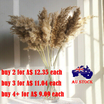 AU12.99 • Buy 10pcs Natural Dried Pampas Grass Reed Flower Bunch Wedding Home Decor