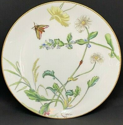 Beautiful Antique Mintons Aesthetic Movement Botanical Moth Cabinet Plate • 100£