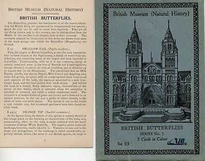 British Museum Envelope & Leaflet For Postcard Set E5 British Butterflies • 0.99£