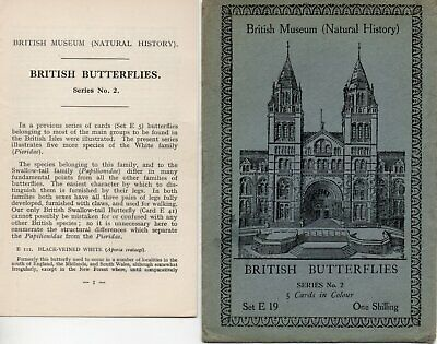 British Museum Envelope & Leaflet For Postcard Set E19 Exotic Butterflies • 0.99£