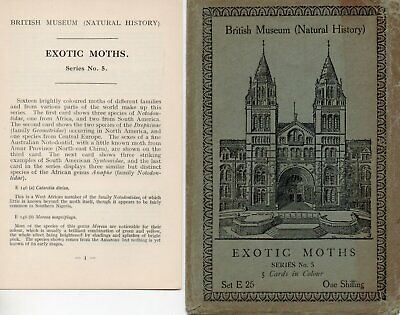 British Museum Envelope & Leaflet For Postcard Set E26 Exotic Moths • 0.99£