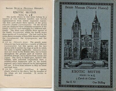 British Museum Envelope & Leaflet For Postcard Set E32 Exotic Moths • 0.99£