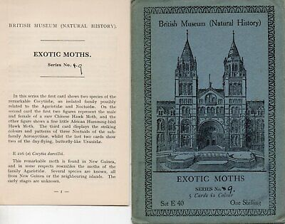 British Museum Envelope & Leaflet For Postcard Set E40 Exotic Moths • 0.99£