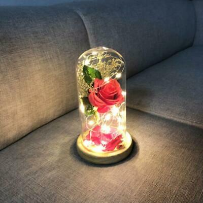 AU28.94 • Buy Simulation Red Rose LED Decorative Lights Valentine's Day Anniversary Gift WT