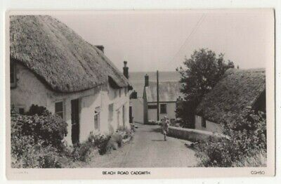 £3 • Buy Cadgwith Beach Road Cornwall Vintage RP Postcard 317c