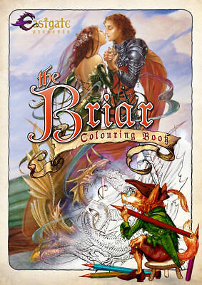 BRIAR Colouring Book Fantasy Art  Fairy Adult Therapy • 7.99£