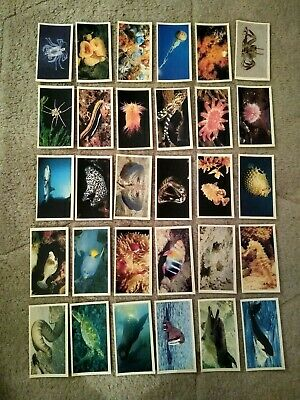 Complete Set Grandee Cigar Cards The Living Ocean • 1.49£