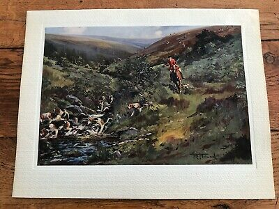 £29.99 • Buy 1937 Original Lionel Edwards Print - Down The Water ! ( Hunting )