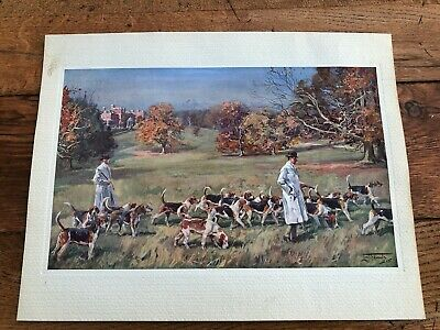 £29.99 • Buy 1937 Original Lionel Edwards Print - Hounds At Exercise !  ( Hunting )