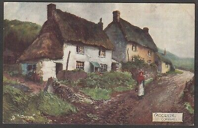 £4.99 • Buy Postcard Cadgwith Nr Lizard Cornwall Art By Jotter Posted 1904 Raphael Tuck