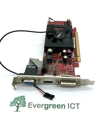 £9 • Buy Palit GeForce 8400GS XNE+8400S+HD56+PM8098 512M DDR2 Graphics Card