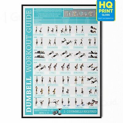 £12.99 • Buy Dumbbell Fitness Workout Training Chart Poster Exercise Print *LAMINATED*