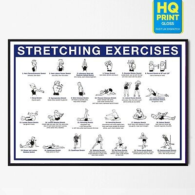 £8.99 • Buy Stretching Fitness Training Chart Workout Exercise Poster GYM *LAMINATED*