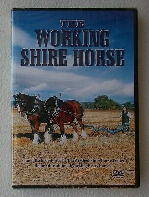 The Working Shire Horse : Rare DVD ~ Brand New & Sealed • 14.99£