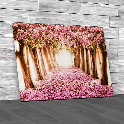 £34.95 • Buy Romantic Tunnel Of Pink Flower Trees Canvas Print Large Picture Wall Art