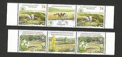 Serbia-mnh Strip-european Nature Protection-flowers-fauna-sheep-horse-2016. • 5.98£