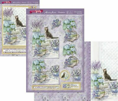 Hunkydory Such A Cute Kitten Cat Deco Large Decoupage Card Kit P&P Discount • 1.99£