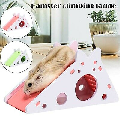 £6.12 • Buy Hamster Mice Hideout House With Ladder Slide Pet Exercise Toy Exercise Toy New