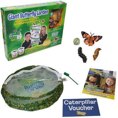 £22.99 • Buy Insect Lore Giant Live Butterfly Garden W/ 45cm Habitat & Redemption Certificate