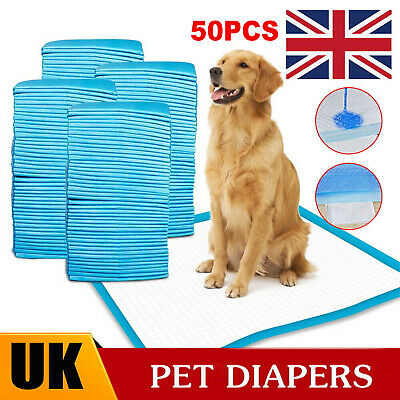 £9.69 • Buy HEAVY DUTY DOG PUPPY LARGE ABSORBENT TRAINING PADS FLOOR TOILET WEE MATS 60x45CM
