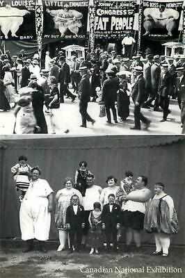 $ CDN3.57 • Buy Congress Of Fat People At CNE Circus Sideshow In C.1913 Modern Postcard