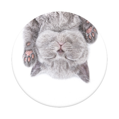 AU14.95 • Buy PopSockets PopGrip: Swappable Grip For Phones & Tablets - Cat Nap