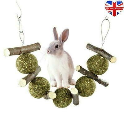 £4.69 • Buy Pet Teeth Grinding Toys Wood Tree Hanging Hamster Small Animal Cookie For Rabbit