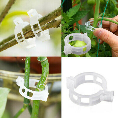 £1.99 • Buy Uk Veggie And Tomato Garden Plant Support Clips For Trellis Twine Greenhouse