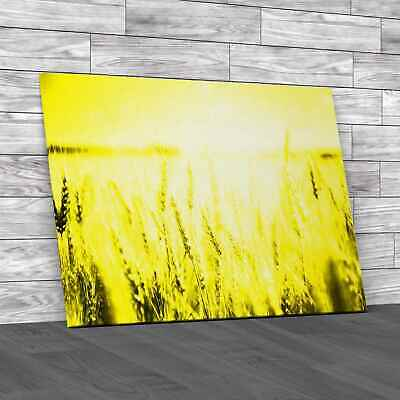 £16.95 • Buy Golden Wheat Field Yellow Canvas Print Large Picture Wall Art