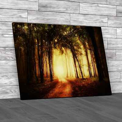 £12.95 • Buy Road Through A Golden Forest Canvas Print Large Picture Wall Art