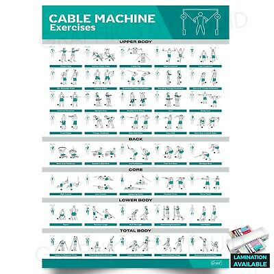 £2.99 • Buy Cable Machine Exercises Workout Gym Fitness Training POSTER PRINT *LAMINATED*