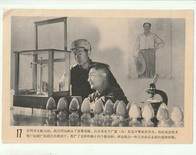 $0.99 • Buy  Red Flag Militia Battalion Poster 17 Socialist Education Pictures China 1965