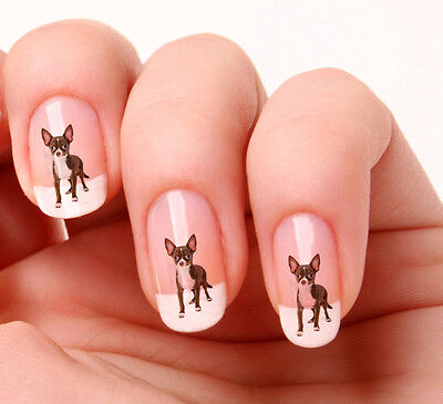 £1.99 • Buy 20 Nail Art Stickers Transfers Decals #395 - Chihuahua Just Peel & Stick