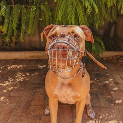 £21.50 • Buy New Strong Metal Wire Basket Dog Muzzle Amstaff Pit Bull, Bull Terrier Size 4, 5